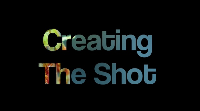 • Creating The Shot